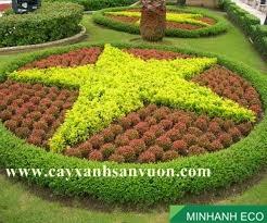 Trồng cây xanh thảm cỏ,trang trí sân vườn